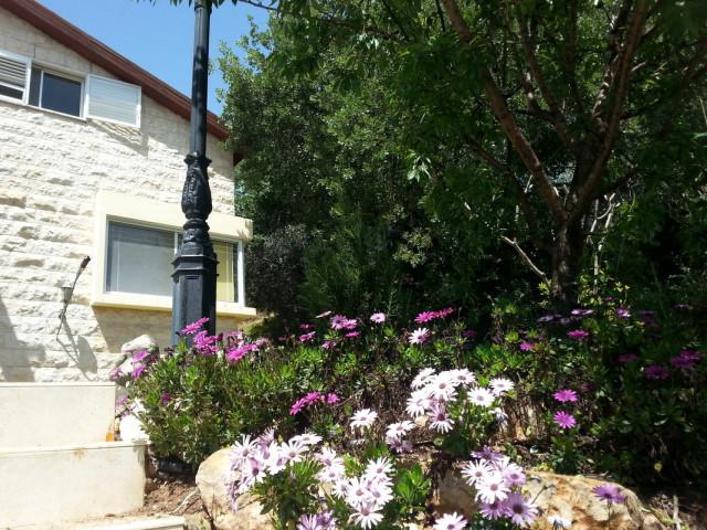 Israel rentals in Kiryat-Tivon, Kiryat-Tivon