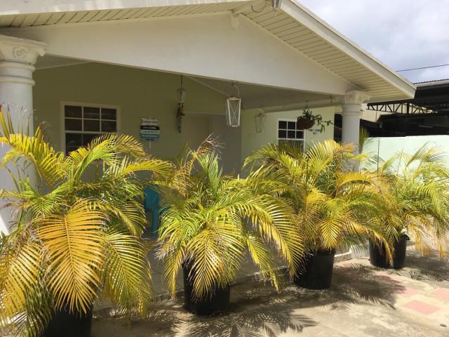 Aruba long term rental in Oranjestad, Oranjestad