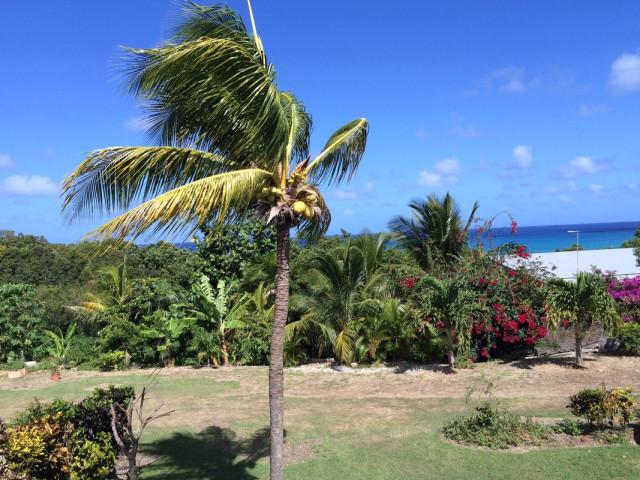 Guadalupa Affitti Vacanze in Anse-Bertrand, Anse-Bertrand