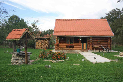 Romania holiday rentals in Pesteana, Pesteana