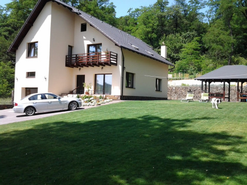 Romania holiday rentals in Medias, Medias