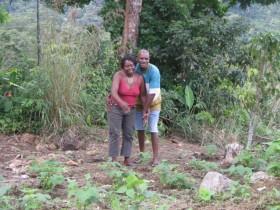 Dominica Island holiday rentals in Roseau, Roseau