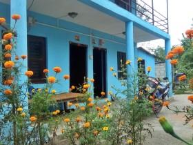 Nepal Vacation rentals in Nilkantha, Nilkantha
