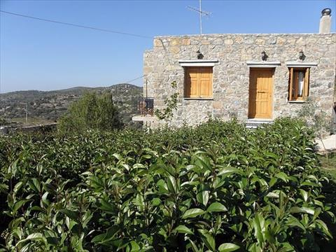 Greece holiday rental in Aegean Islands, Mastichochoria