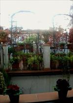 Italy long term rentals in Tuscany, Firenze
