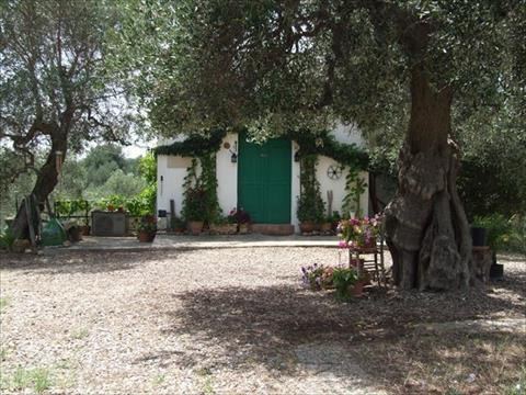 Italy long term rental in Basilicata, Montalbano Jonico